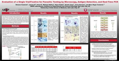 Ewaluacja próbek parazytologicznych w mikroskopii, detekcji antygenu i RT-PCR
